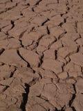 Mud-crack. Soil nature dry-season background stock image
