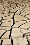 Mud Cracks. Dried mud cracks along wash in southern Nevada Stock Images