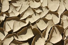 Mud Cracks Royalty Free Stock Image