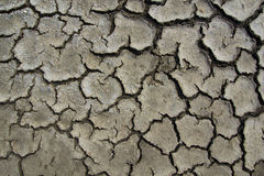 Mud cracks Royalty Free Stock Photography