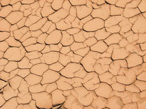 Mud cracks. From drying silty clay layer in dried stream bed Stock Image