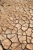 Mud Cracks. Cracks of Dried Mud in Warm Sunset Stock Images