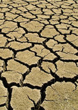 Mud Cracks A1. Close-up view of dried and cracked earth Royalty Free Stock Photography