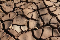 Mud Cracks Royalty Free Stock Photo