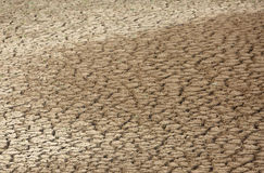 Mud cracks developed due to water scarcity Royalty Free Stock Images