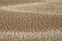 Mud cracks developed due to water scarcity Royalty Free Stock Image