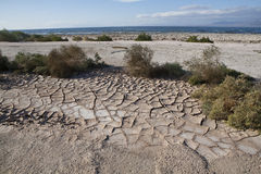 Mud cracks near the Salton Sea Stock Image
