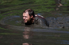 Mud crawl Royalty Free Stock Photos