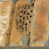 Mud daubers nest Royalty Free Stock Image