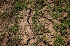 Mud dirt texture. Dry cracked earth. Mud dirt texture. Dry cracked soil during drought Stock Photo