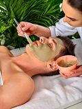 Mud facial mask of woman in spa salon. Face massage . Stock Images