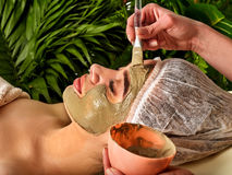 Mud facial mask of woman in spa salon. Face procedure. Royalty Free Stock Photo
