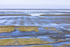 Mud flat of dutch Waddenzee near Noordkaap, Groningen Stock Images
