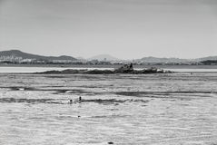 Mud flat in front of city Stock Photography