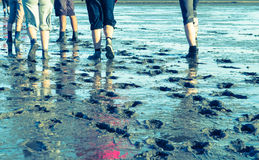 Mud Flat Hiking Royalty Free Stock Photography