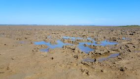 Mud flat by low tide Ebbe stock photography
