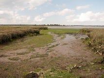 Mud flat texture of earth landscape Maldon black water. Essex; England; UK royalty free stock image