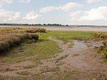 Mud flat texture of earth landscape Maldon black water. Essex; England; UK royalty free stock images