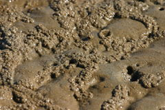 Mud flats Royalty Free Stock Photo