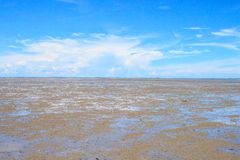 Mud flats in the bay Stock Images
