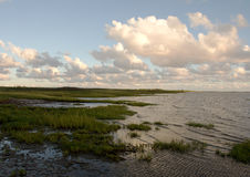 Mud-flats coast near Tonder, Denmark. In the evening showing grass, sea and a blue sky with white clouds over the horizon Stock Photo