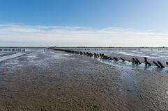 Mud flats Stock Photos