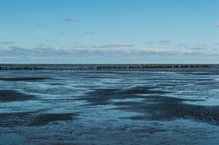 Mud flats. Coastal Feature of the dutch mud flats Stock Images