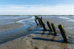 Mud flats Royalty Free Stock Images