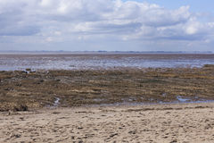 Mud flats at low tide, Spurn Point Nature Reserve Royalty Free Stock Image