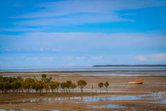 Mud flats and mangroves Yorke peninsula. A small boat sits high and dry on the mud flats Stock Image