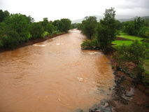 Mud Flood-II royalty free stock images