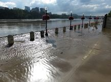 Mud and Flooded Potomac River Stock Photos