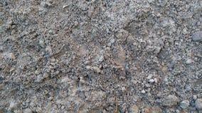 Mud ground winter Stock Photography