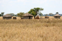 Mud Hut Village - Tarangire National Park. Tanzania, Africa Stock Images