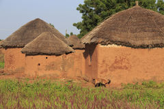 Mud huts and goat Royalty Free Stock Photography