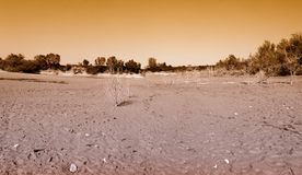 Mud in lake bed Royalty Free Stock Photos
