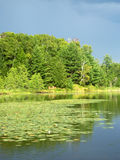 Mud Lake in Northwoods Wisconsin Stock Image
