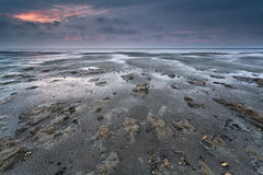 Mud at low tideon North sea Stock Images