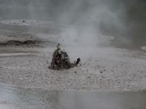 Mud pool in geotermal area park in Rotorua, New Zealand stock photo