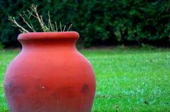 Mud pot Stock Images
