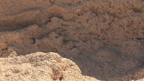 Mud pots in Yellowstone. National Park stock footage