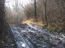 Mud and puddles on the dirt road. Tire tracks on a muddy road in the countryside Royalty Free Stock Images
