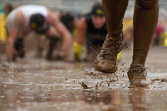Mud race runners. Passing under a barbed wire obstacles during extreme obstacle race,detail of the legs stock photo