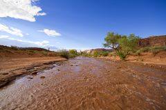 Mud river Stock Image