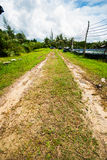 Mud road Stock Photography