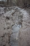 Mud on the road. After heavy rain Royalty Free Stock Photo
