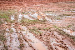 Mud road after the rain . Stock Image