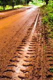 Mud Road trough rubber plantation Stock Photo