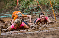 Mud run race Royalty Free Stock Image