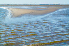 Mud and sand flats, mirage and rippling shallow water on Waddensea, Netherlands. Panorama of mud and sand flats, mirage and rippling shallow water at low tide on stock photo